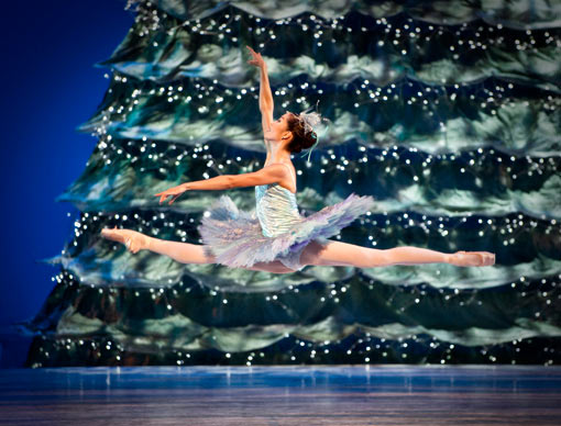 Prima Ballerina Maiko Nishino