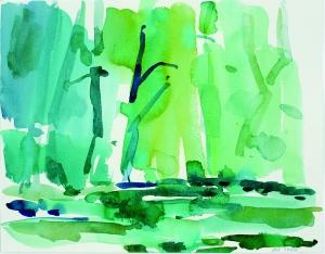 Dunfield-Creek-_37-11x14