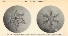 a89ef9bb0b2dda2971a7c8b53c56660f--artificial-snow-picture-show